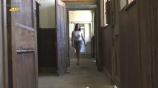 Miss Hybrid walks through the stables nipple rings pushing through her tight top, sexy denim shorts and high heels.